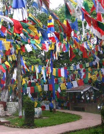 Darjeelingflags